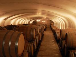 Marche regionale Weine, qualitätsweine italienische Marken