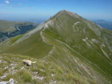 Monte Priora, Natur Italien Marken