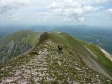 Monte Sibilli, Nationalpark Italien